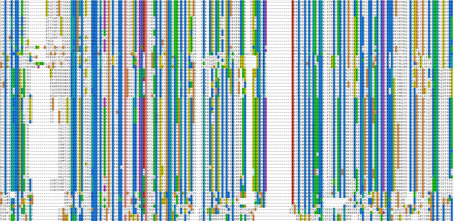 Czym zajmuje się bioinformatyka?